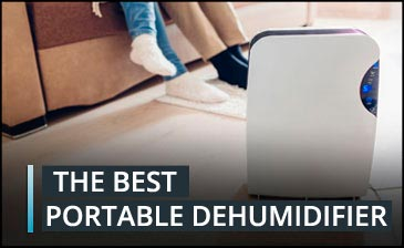 What is the best portable dehumidifier?